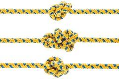 在绳索或春天的被栓的结 免版税图库摄影