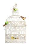 与被隔绝的鸟的美丽的被雕刻的笼子 图库摄影