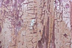 与被风化的油漆的老土气木破旧的盘区 免版税库存图片