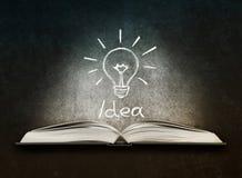 与被绘的电灯泡的被打开的书作为概念想法 库存照片