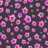 与被绘的花的无缝的葡萄酒样式 免版税库存照片