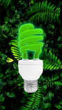 与裁减路线的绿色荧光灯电灯泡 免版税图库摄影