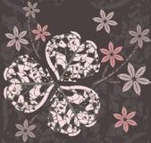 与装饰三叶草叶子和花的抽象样式 免版税库存照片