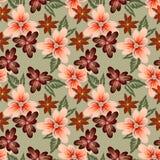 与装饰不同的花的光栅明亮的花卉样式 库存例证