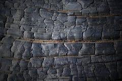 与装饰图案的被烧的木纹理 库存图片