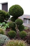 与装饰树的庭院床 免版税库存图片