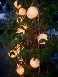 与装饰的圆光的室外树,灯光 免版税库存照片