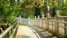 与装饰的白色楼梯栏杆从球在一个热带公园 库存照片
