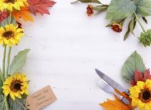 与装饰的边界的愉快的感恩背景 库存图片