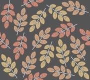 与装饰秋叶的无缝的样式 免版税图库摄影