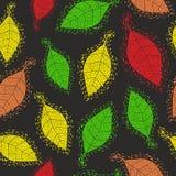 与装饰秋叶的无缝的样式 库存图片