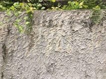 与装饰绿色叶子的抽象墙壁背景 免版税库存图片
