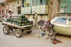 与西瓜卖主开罗老城镇埃及的街道场面 库存图片