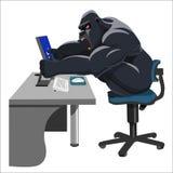 与计算机的恼怒的大猩猩 免版税库存图片