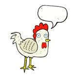 与讲话泡影的动画片鸡 免版税库存照片