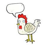 与讲话泡影的动画片鸡 库存图片