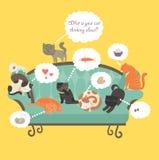 与讲话泡影的滑稽的猫 免版税库存照片