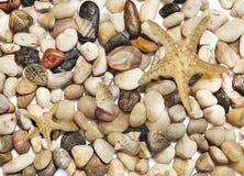与许多不同的色的石头、海星和壳的背景 免版税库存图片