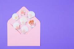 与许多扇贝壳的桃红色信封在色的紫色backgro 库存照片