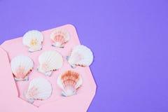 与许多扇贝壳的桃红色信封在色的紫色backgro 库存图片