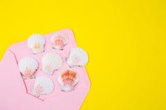 与许多扇贝壳的桃红色信封在色的黄色backgro 库存照片