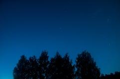 与许多星的蓝色黑暗的夜空在树上的领域 Milkyway波斯菊 图库摄影