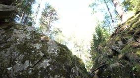 与许多树的峡谷底视图在明亮的天空背景 英尺长度 巨大的岩石在反对蓝色的狭窄的峡谷 股票视频
