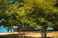 与许多树竹子和小船的热带海滩 库存图片