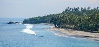 与许多棕榈树的萨努尔海滩在巴厘岛,印度尼西亚 图库摄影
