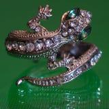 与许多的奇怪的蜥蜴圆环宝石和石头 免版税库存照片