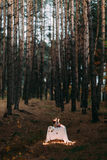 与许多的逗人喜爱的桌浪漫晚餐的燃烧的蜡烛在秋天晚上森林里 库存照片