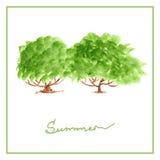 与许多的绿色夏天树离开水彩 图库摄影