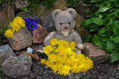 与许多蒲公英花的玩具熊 图库摄影