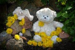 与许多蒲公英花的玩具熊 免版税库存图片