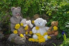 与许多蒲公英花的玩具熊 免版税图库摄影