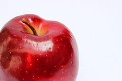 与词根关闭的红色苹果在白色背景 免版税图库摄影