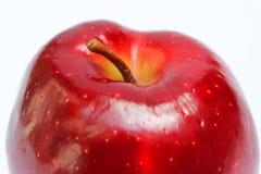 与词根关闭的红色苹果 图库摄影