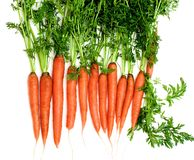 与词根的未加工的红萝卜 库存图片