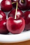 与词根的红色樱桃在白色板材 库存图片