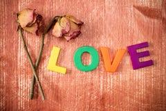 与词爱的两朵老玫瑰 免版税图库摄影