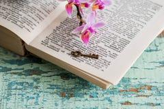 与词的字典页 免版税库存照片