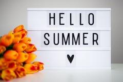 与词`你好夏天`和郁金香花的Lightbox 免版税库存照片