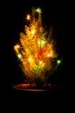 与诗歌选的小圣诞树在罐 黑色背景 库存照片