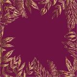 与详细的叶子和植物框架的装饰卡片  在红色的金子 您的设计和字法的准备好模板 传染媒介Illust 免版税图库摄影