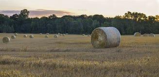 与谷仓和树的冬天领域 免版税库存图片