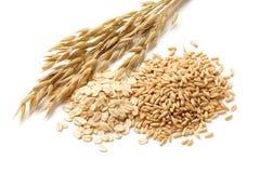与谷物的燕麦