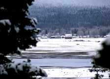 与谷仓、山镇和多雪的树的冬天风景 库存图片