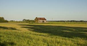 与谷仓和一大树shawow的一个领域 库存照片