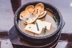 与豆腐和壳,日本食物的大酱汤 免版税库存图片