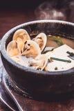 与豆腐和壳,日本食物的大酱汤 库存照片